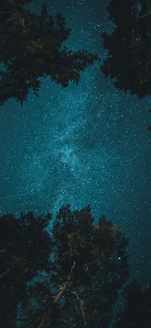 starry night iPhone 12 wallpaper