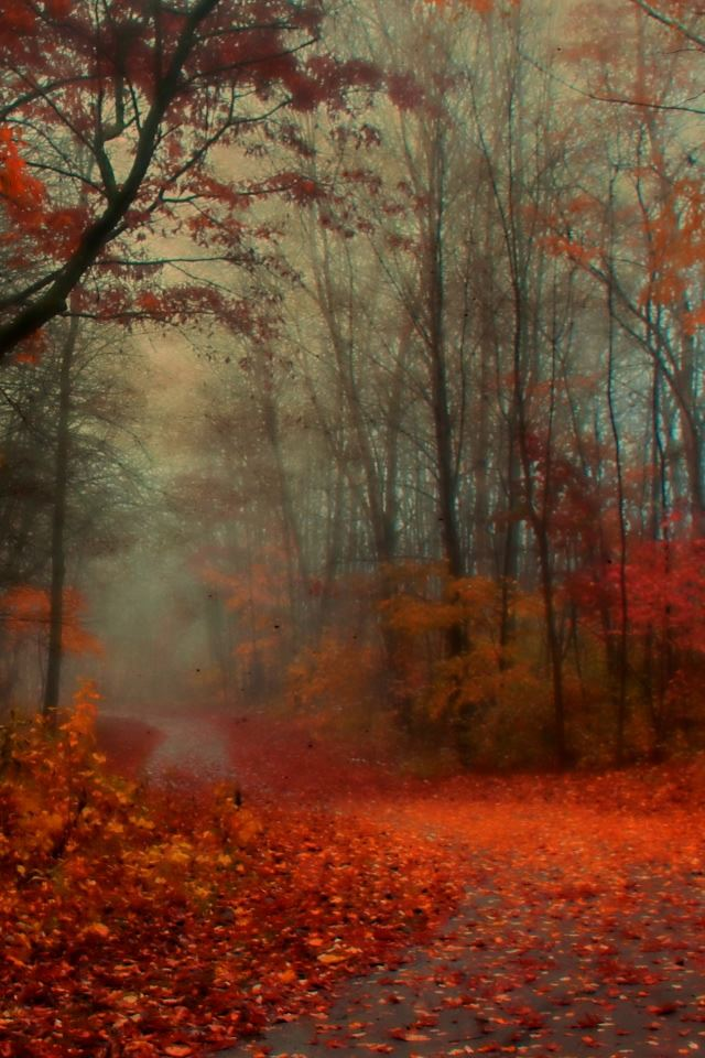 Romantic Autumn iPhone 4s wallpaper