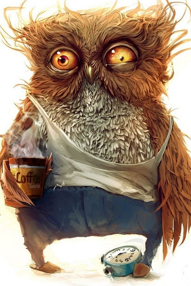 Funny Owl Wallpaper Iphone 4s Wallpapers Free Download