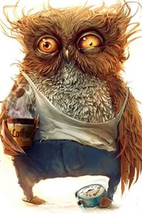 funny owl wallpaper iPhone 4s wallpaper