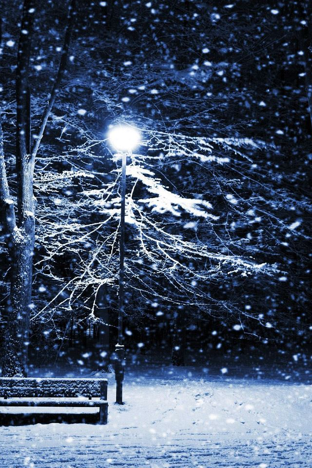 Snow Night Park Iphone 4s Wallpapers Free Download