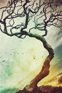 Wither Tree Branch iPhone 4s wallpaper