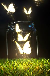 Fantasy Butterfly Jar iPhone 4s wallpaper