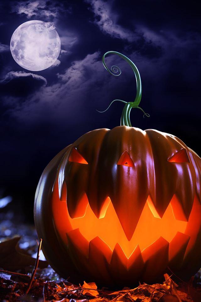 Halloween Pumpkin Wallpaper Iphone.Halloween Theme Pumpkin Iphone 4s Wallpapers Free Download