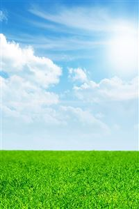 Pure Green Grass Blue Sky iPhone 4s wallpaper
