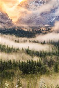 Nature Foggy Forest Mountains Landscape iPhone 4s wallpaper