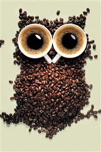 Coffee Owl iPhone 4s wallpaper