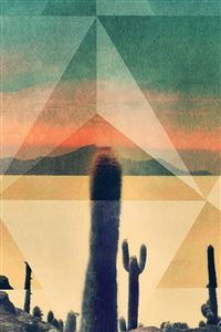 Desert Drought Cactus Rhombus Cover Art iPhone 4s wallpaper