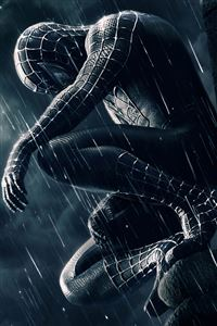 Spiderman iPhone 4s wallpaper