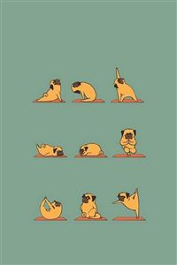 Funny Pug Doing Yoga  iPhone 4s wallpaper