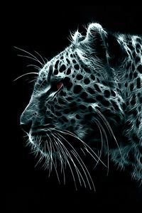 Snow Leopard iPhone 4s wallpaper