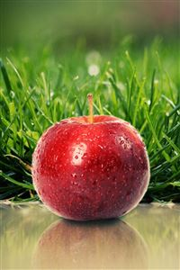 Red Apple iPhone 4s wallpaper
