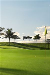 Golf Course iPhone 4s wallpaper