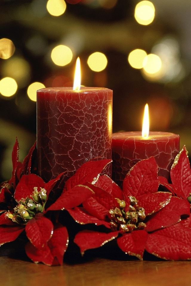 Candles Flowers Iphone 4s Wallpapers Free Download