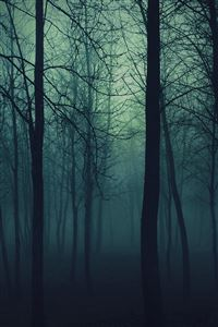 Dark Forest iPhone 4s wallpaper