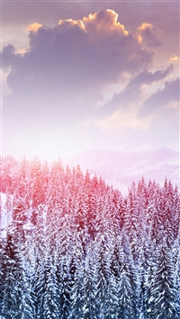 Winter Snow Trees Mountains Forest Sky Clouds iPhone 6(s)~8(s) wallpaper