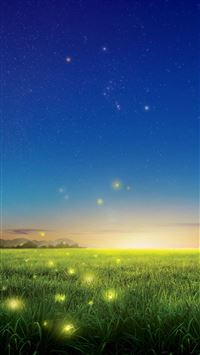 Fireflies Country Field iPhone 6(s)~8(s) wallpaper