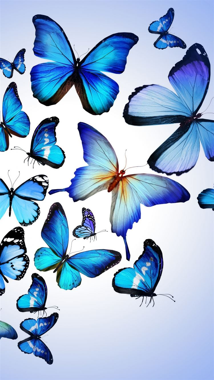 Butterfly Colorful Blue Drawing Art Beautiful Iphone 8 Wallpapers