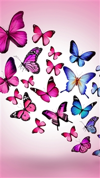 Butterfly Drawing Flying Colorful Background Pink iPhone 6(s)~8(s) wallpaper