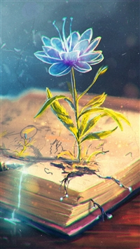 Flower Abstract Book Pen Art iPhone 6(s)~8(s) wallpaper