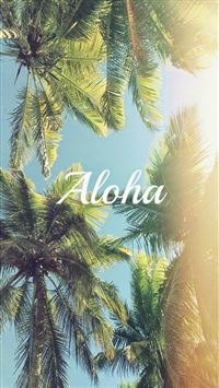 Aloha Palm Trees iPhone 6(s)~8(s) wallpaper