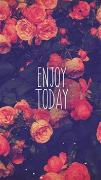 Enjoy Today Red Roses iPhone 6(s)~8(s) wallpaper