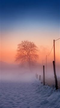 Winter Scene Fog Glow iPhone 6(s)~8(s) wallpaper