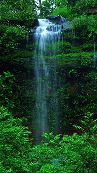 Nature Forest Waterfall iPhone 6(s)~8(s) wallpaper