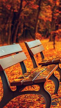 Nature Autumn Fall Leaves On Roadside Bench iPhone 6(s)~8(s) wallpaper