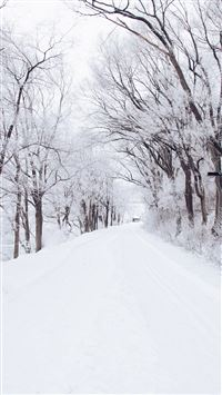 Winter Road Romantic Nature Snow White iPhone 6(s)~8(s) wallpaper