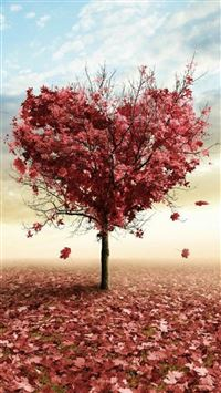 Nature Red Love Fall Tree iPhone 6(s)~8(s) wallpaper