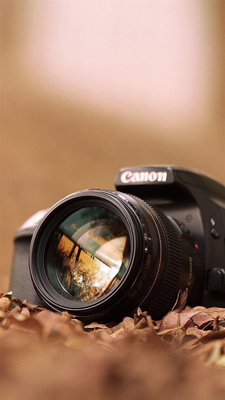 Canon Camera Macro Fall Leaves iPhone 8 Wallpaper Download | iPhone ...