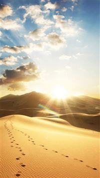 Nature Dry Golden Desert Strong Sunshine iPhone 6(s)~8(s) wallpaper