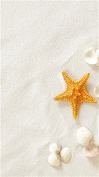 Pure Seaside Beach Starfish Seashell iPhone 6(s)~8(s) wallpaper