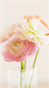 Elegant Beautiful Bloom Glass Vase iPhone 6(s)~8(s) wallpaper