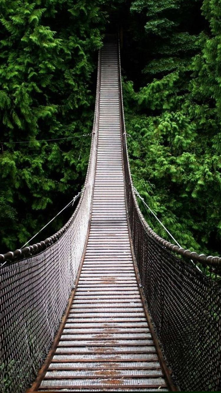 Iphone wallpaper ios 7 tumblr - Nature Long Suspension Bridge Over Forest Iphone 7
