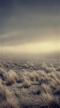 Nature Vast Desolation Grassland Landscape iPhone 6(s)~8(s) wallpaper