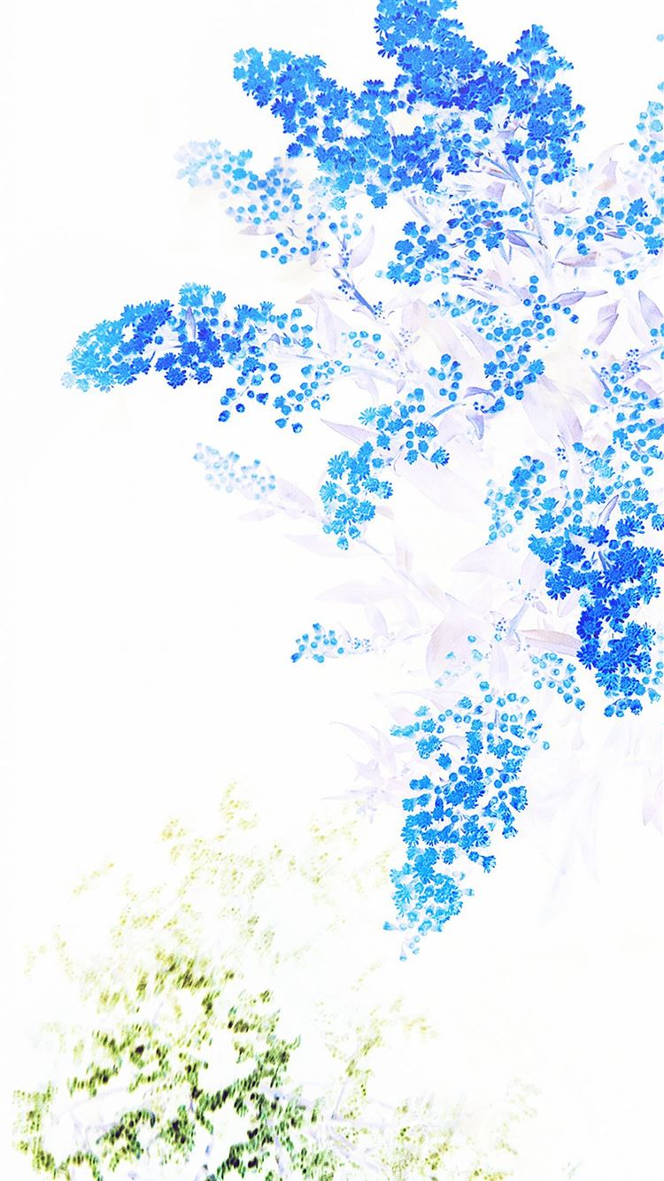 Apple Blue White Flower Ios9 iPhone 8 Wallpapers Free Download