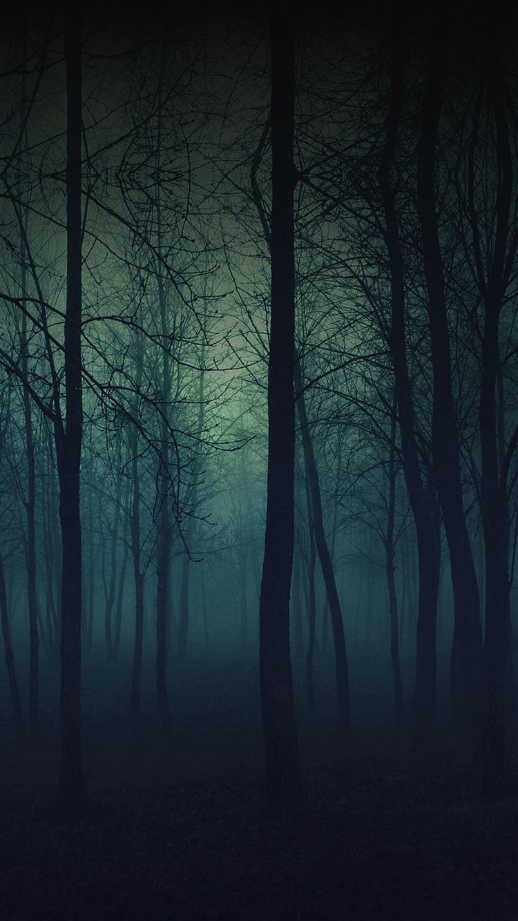 Eerie Forest Night Iphone 8 Wallpapers Free Download