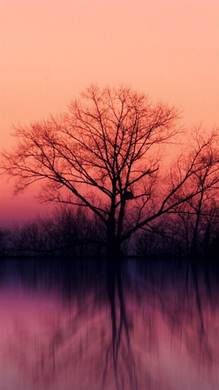 Stillness Calm Lake Sunset Landscape Iphone 8 Wallpapers