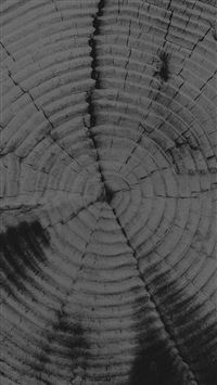 Old Tree Texture Pattern Dark iPhone 6(s)~8(s) wallpaper