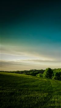 Calm Broaden Wild Grass Hill Field Scenery View iPhone 6(s)~8(s) wallpaper
