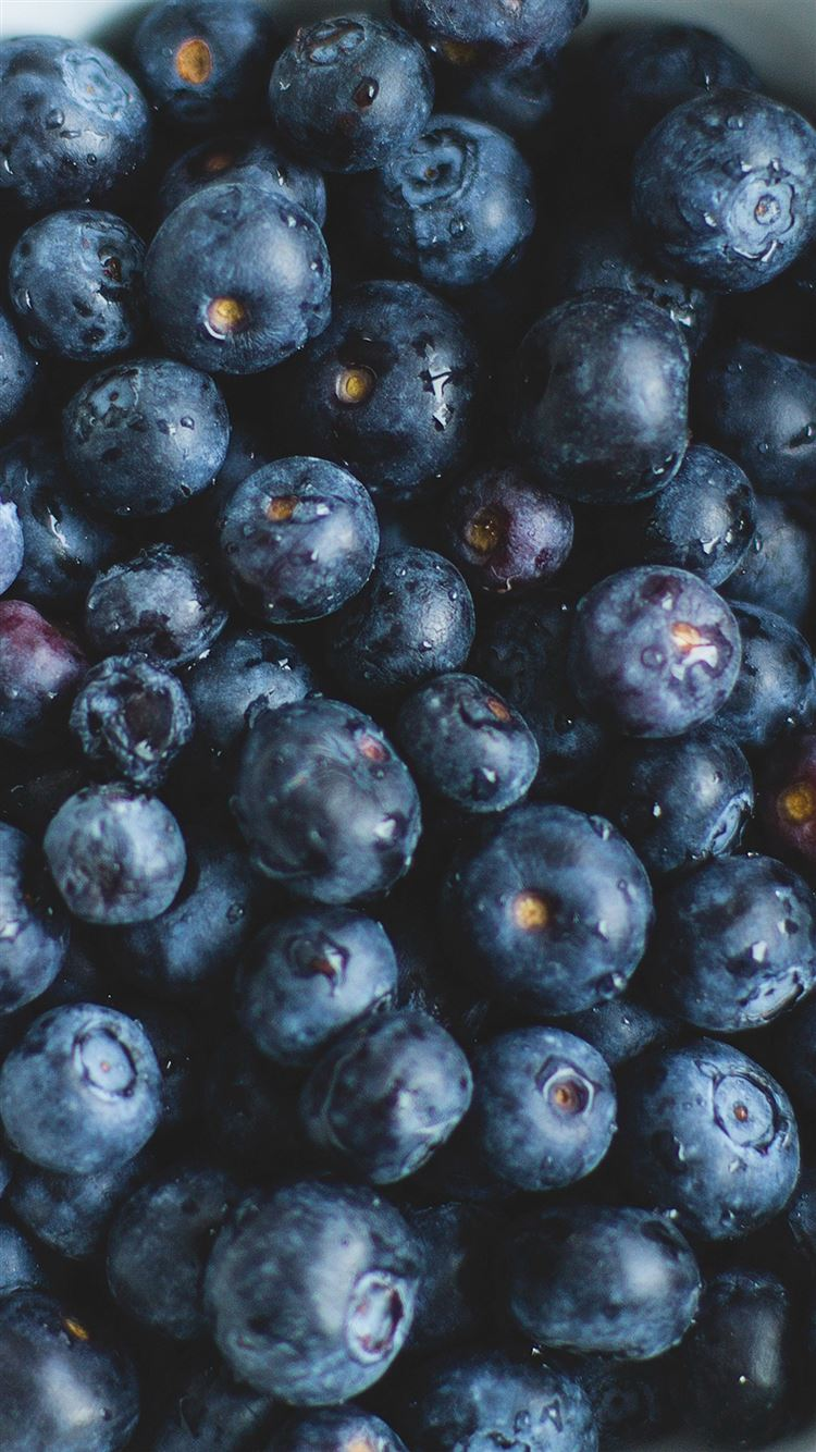 Blue Berry Healthy Fruit Eat Food Nature iphone 8 wallpaper ilikewallpaper com