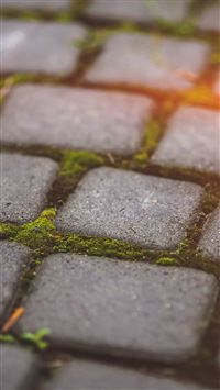 Garden Moss Stone Nature Road City Flare iPhone 6(s)~8(s) wallpaper