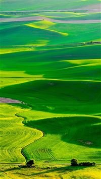 Nature Fresh Grassland Landscape iPhone 6(s)~8(s) wallpaper