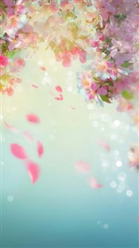 Dreamy Bloomy Colorful Flower Petals Pattern iPhone 6(s)~8(s) wallpaper