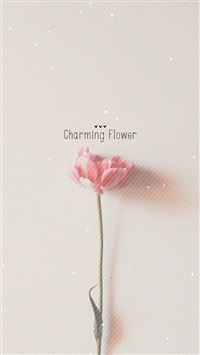 Pure Charming Flower Simple Pattern iPhone 6(s)~8(s) wallpaper