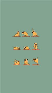 Funny Pug Doing Yoga  iPhone 6(s)~8(s) wallpaper