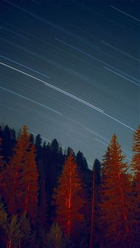 Night Wood Mountain Star Sky Nature iPhone 6(s)~8(s) wallpaper