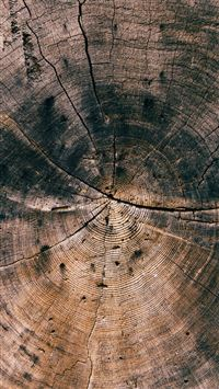 Nature Wood Line Texture Old Dark Pattern iPhone 6(s)~8(s) wallpaper